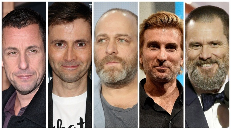 Adam Sandler, David Tennant, H. Jon Benjamin, Sharlto Copley, and Jim Carrey