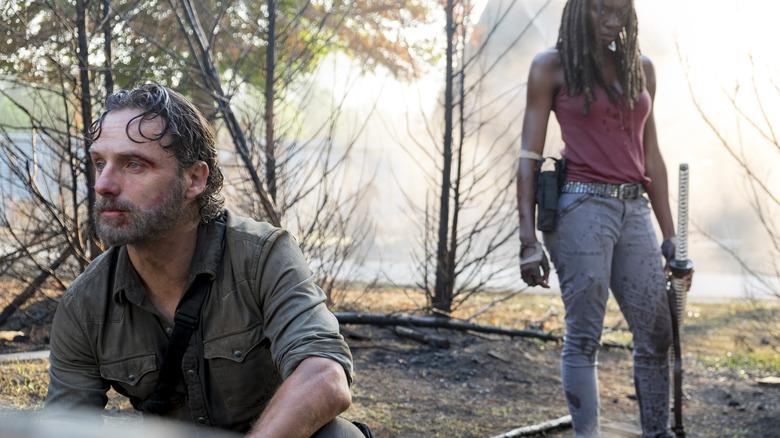 """Andrew Lincoln and Danai Gurira in The Walking Dead"""