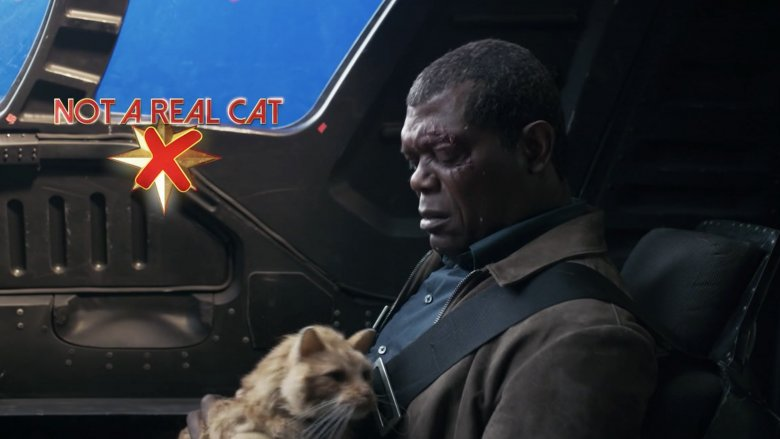 Samuel L. Jackson and fake Goose on the Captain Marvel set