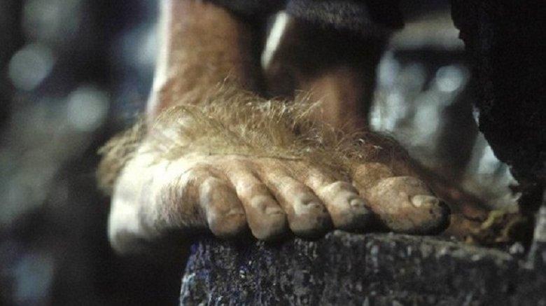 hobbit's foot